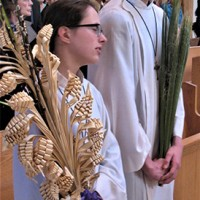 Palm_Sunday3.jpg